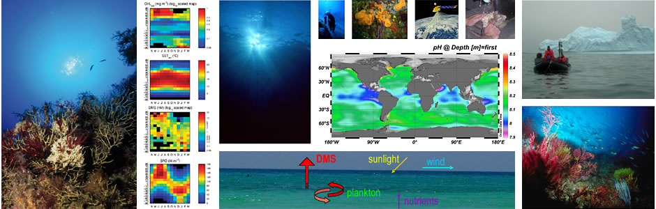 Research Group on Marine Biogeochemistry and Global Change